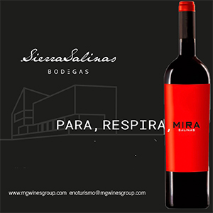 210401-210415-sierra-salinas-300x300