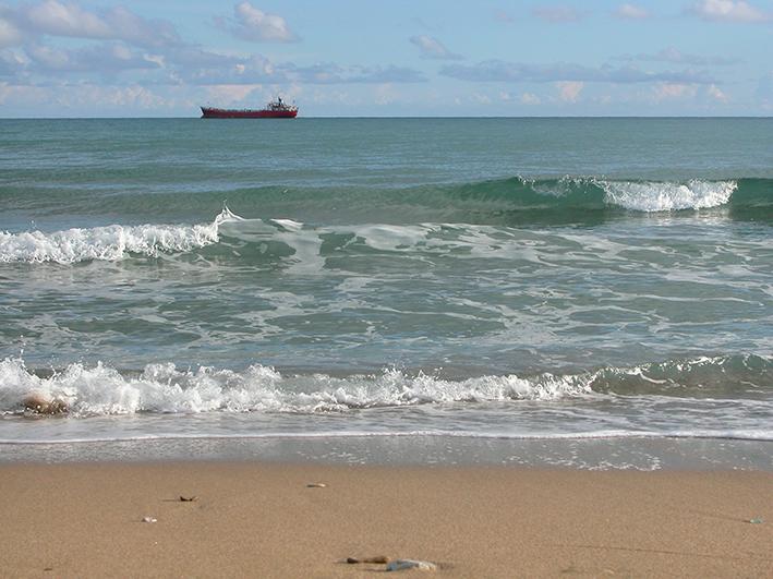 Trituradora-playa