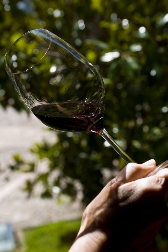 Copa de vino Ribera del Duero_Torremilanos