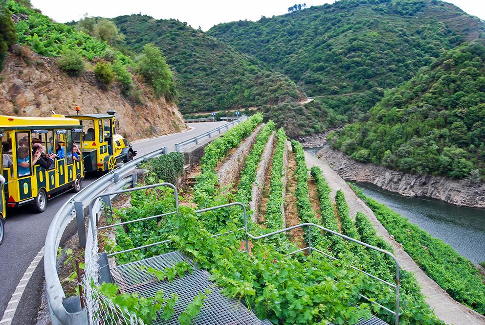 Tren Turístico Aba Sacra - Sober