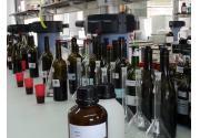 vino, ciencia, investigación, variedades, vid, Imidra, Madrid
