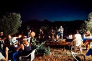 Disfruta de la música de los olivos milenarios con vinos de l'Estanquer
